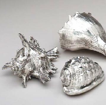 Silver Seashells