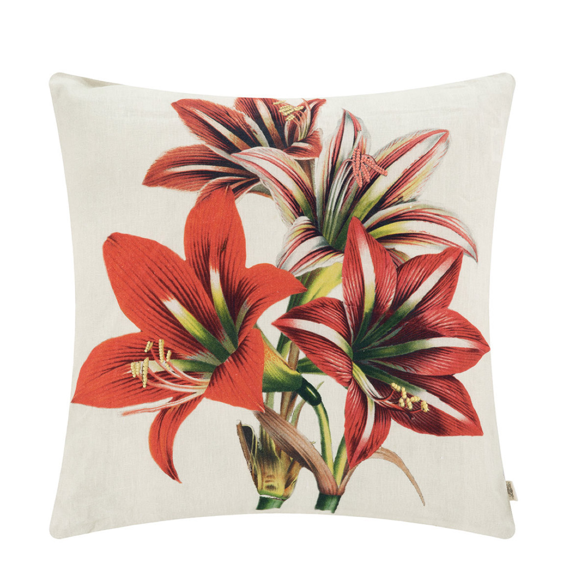 Amaryllis cushion