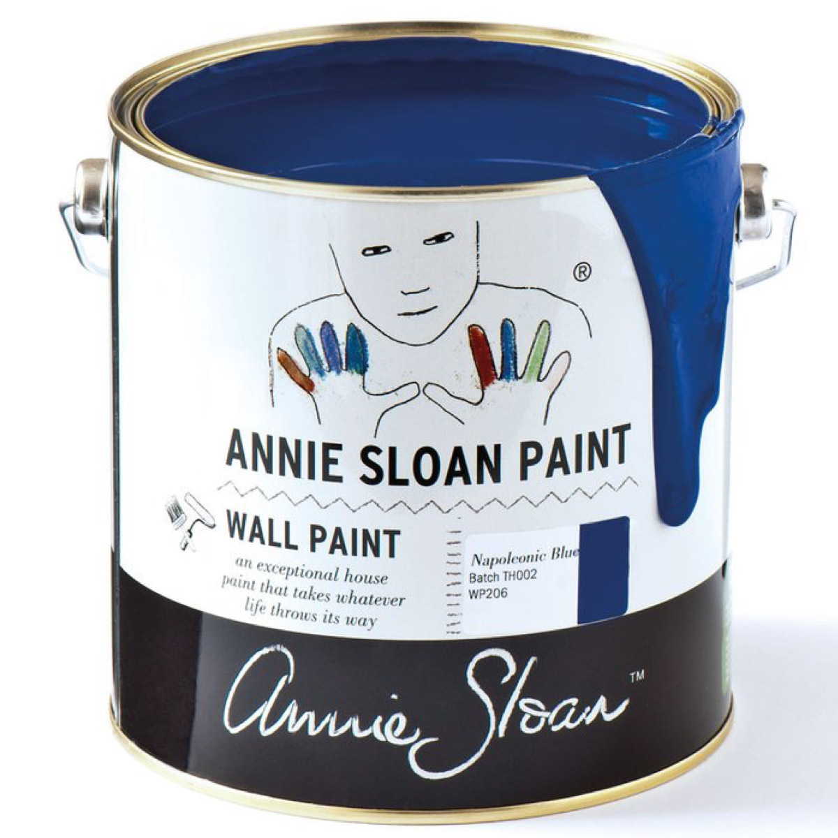 Napoleonic Blue Wall Paint