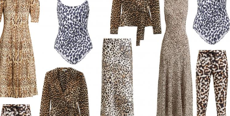Loving the Leopard